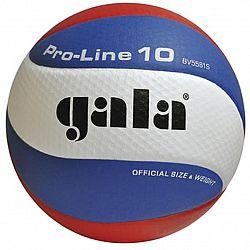 Volejbalová lopta GALA Pro Line BV 5581S
